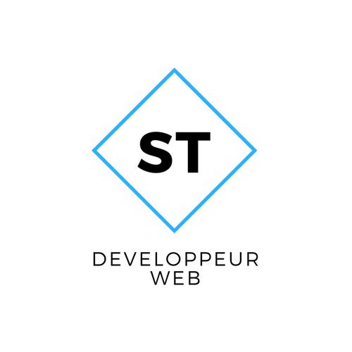 Salim TAOUTAOU | Création de site internet et e-commerce | Tarbes-Auch-Saint Gaudens