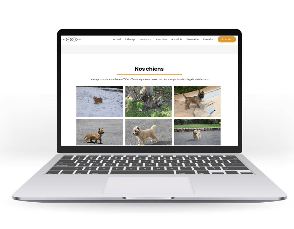 Site internet : cazaril-cairns.com